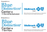 Blue Distinctions Center logos